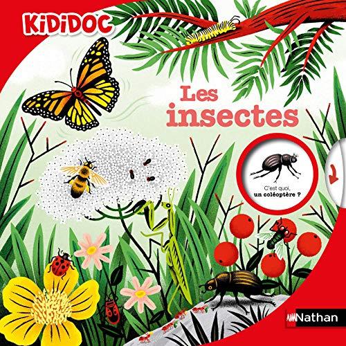 kididoc Les insectes documentaire jeunesse Nathan Sylvie Bessard Muriel Zürcher